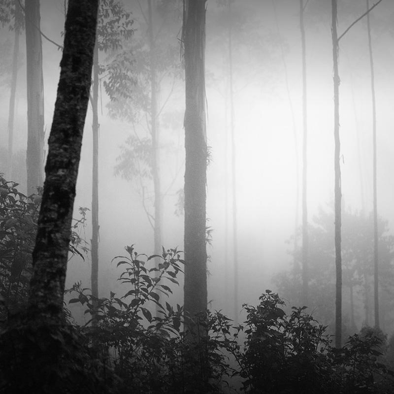 daniel-tjongari-bw-fine-art-landscape-photographer-11