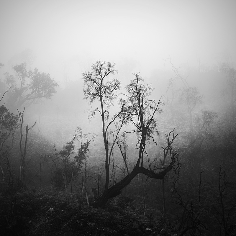 daniel-tjongari-bw-fine-art-landscape-photographer-12