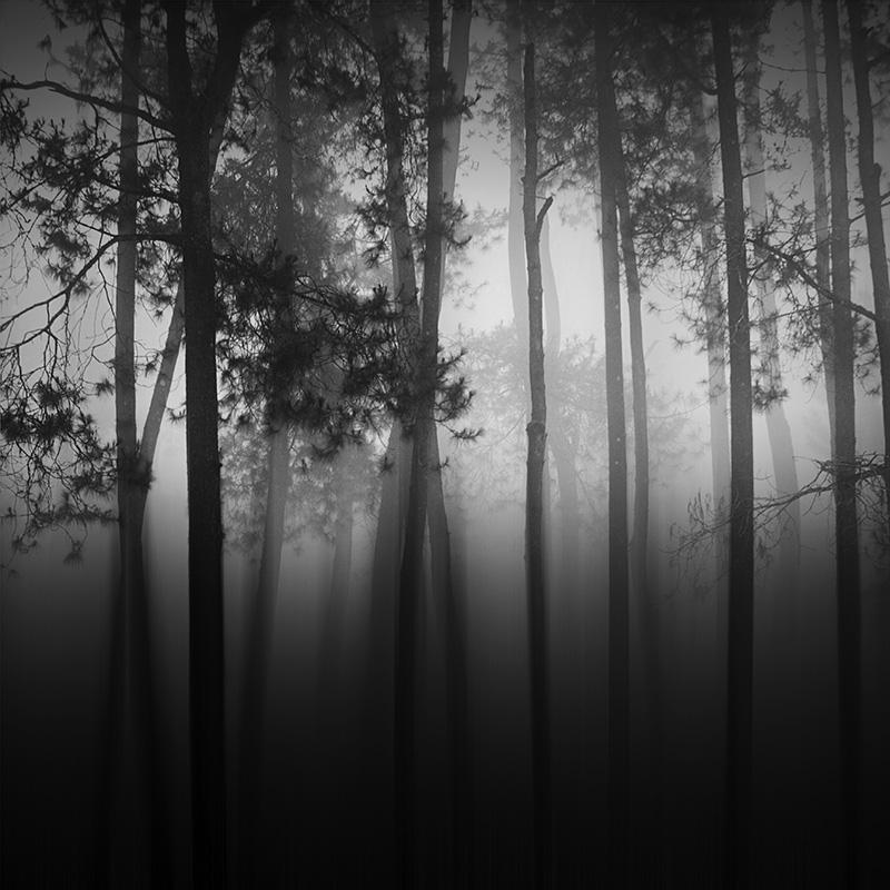 daniel-tjongari-bw-fine-art-landscape-photographer-21