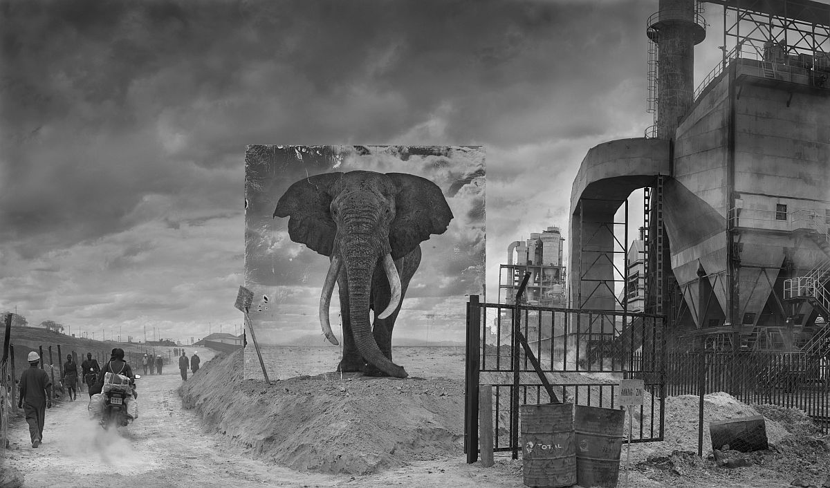 nick-brandt-inherit-the-dust-03