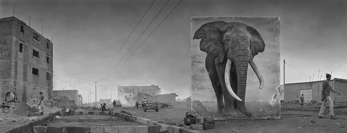 nick-brandt-inherit-the-dust-11