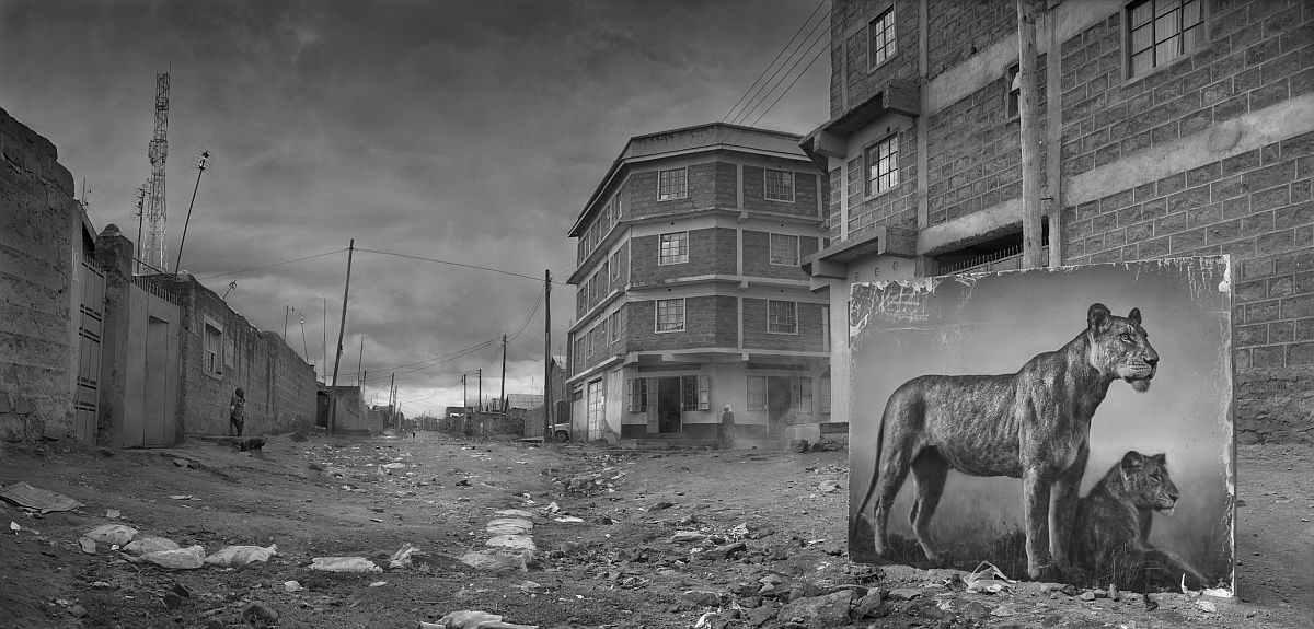 nick-brandt-inherit-the-dust-12
