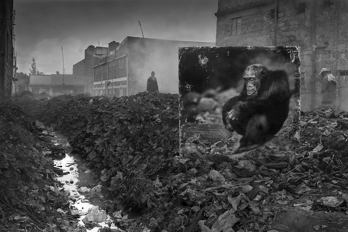 nick-brandt-inherit-the-dust-15