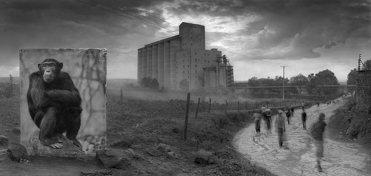 nick-brandt-inherit-the-dust-16