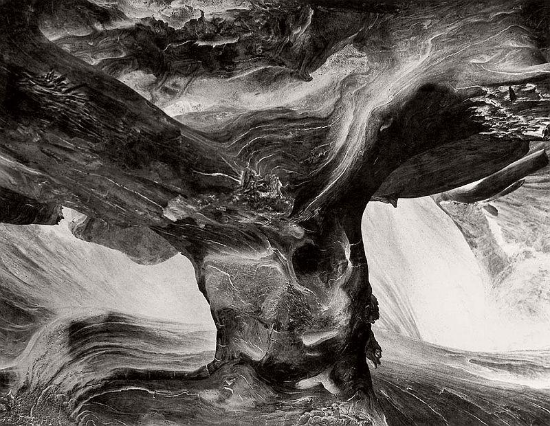 wynn-bullock-revelations-05