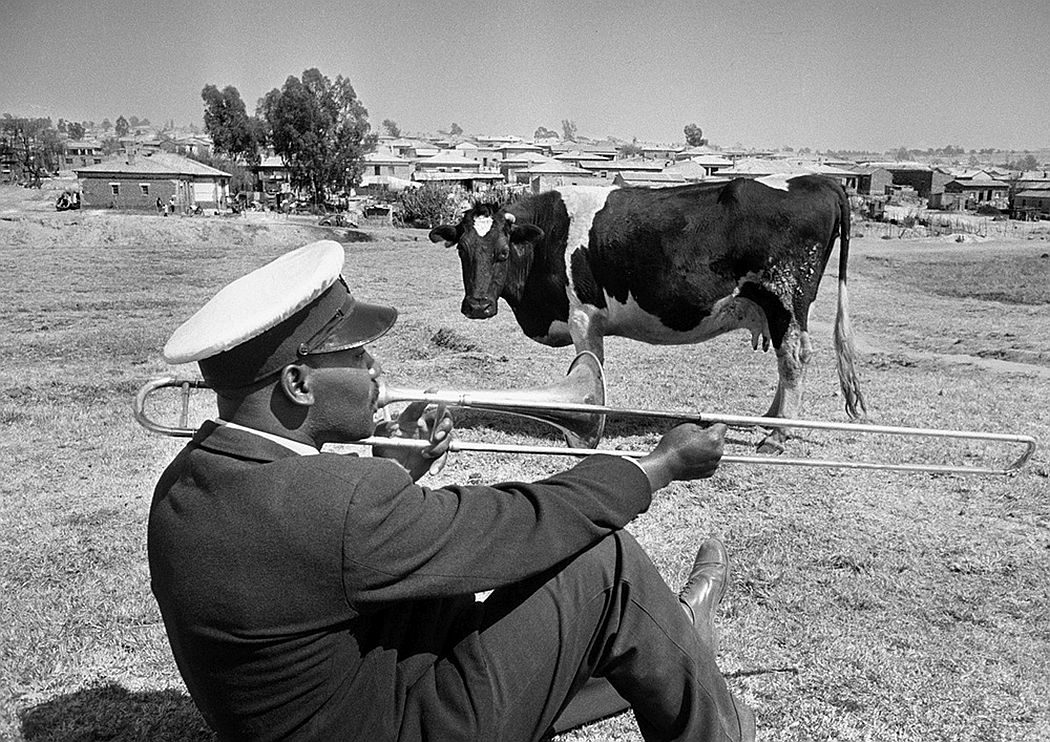 black-and-white-fifties-jurden-schadebergs-south-africa-03