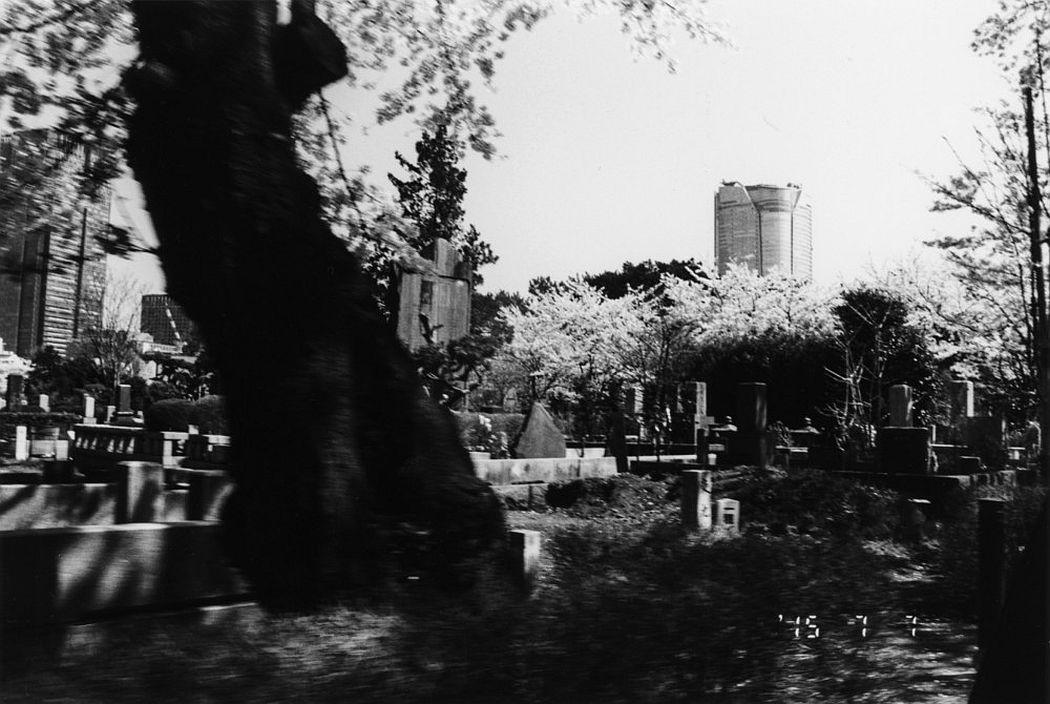nobuyoshi-araki-eros-diary-04