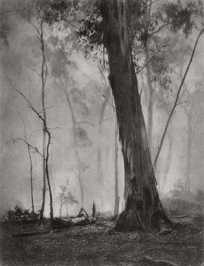 harold-cazneaux-pictorial-australia-photographer-12
