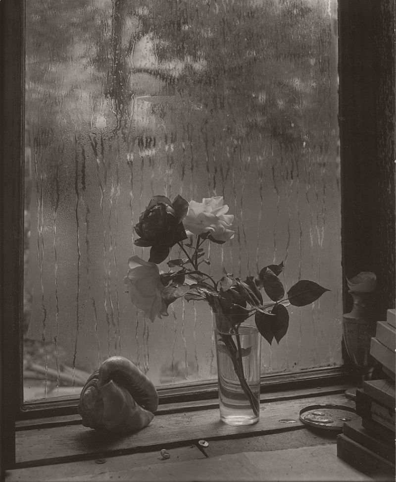 the-intimate-world-of-josef-sudek-05