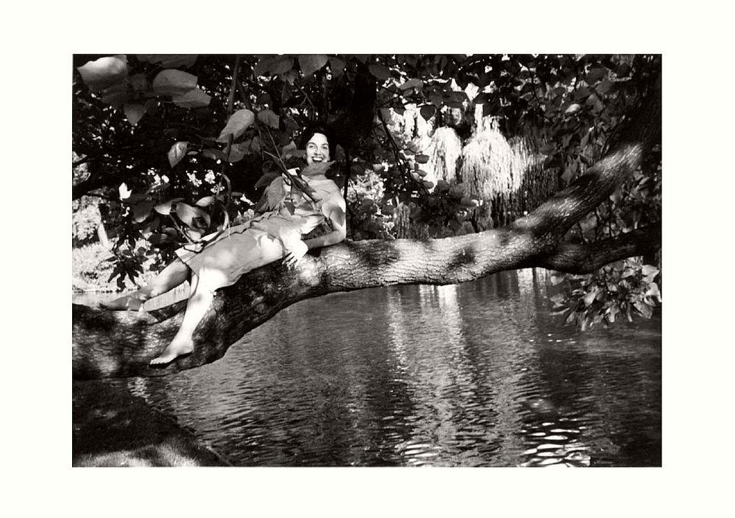 women-in-trees-hatje-cantz-01