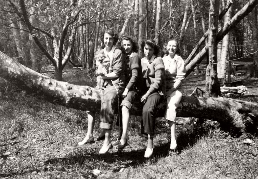 women-in-trees-hatje-cantz-03