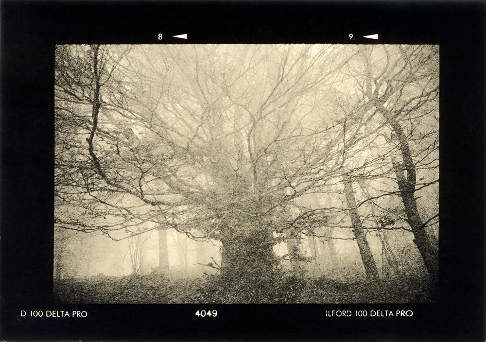 ludovico-poggioli-landscape-photographer-01