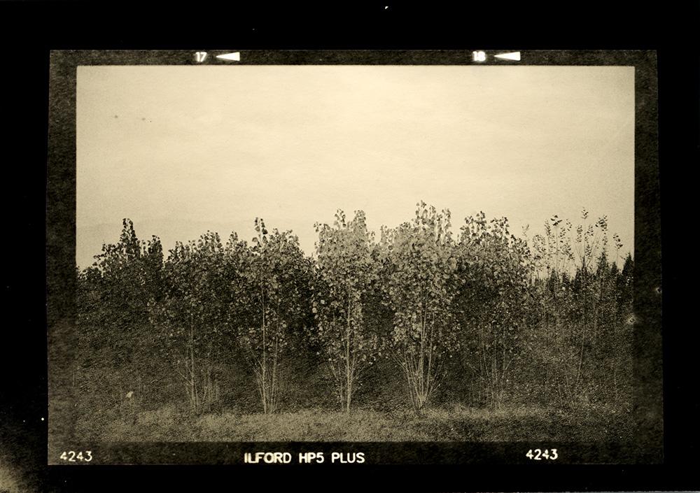 ludovico-poggioli-landscape-photographer-10