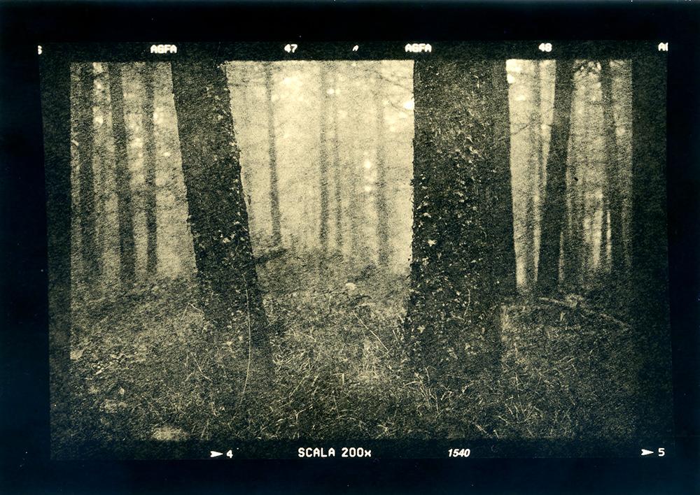 ludovico-poggioli-landscape-photographer-11