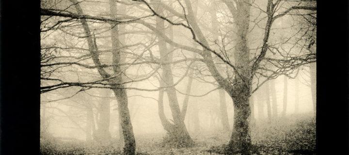 Interview with Landscape photographer Ludovico Poggioli