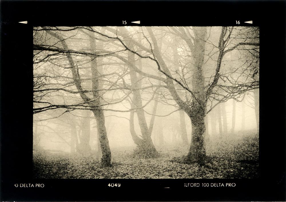 ludovico-poggioli-landscape-photographer-12