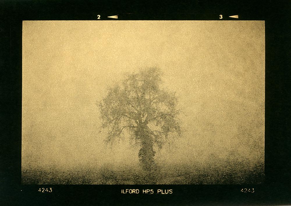 ludovico-poggioli-landscape-photographer-14