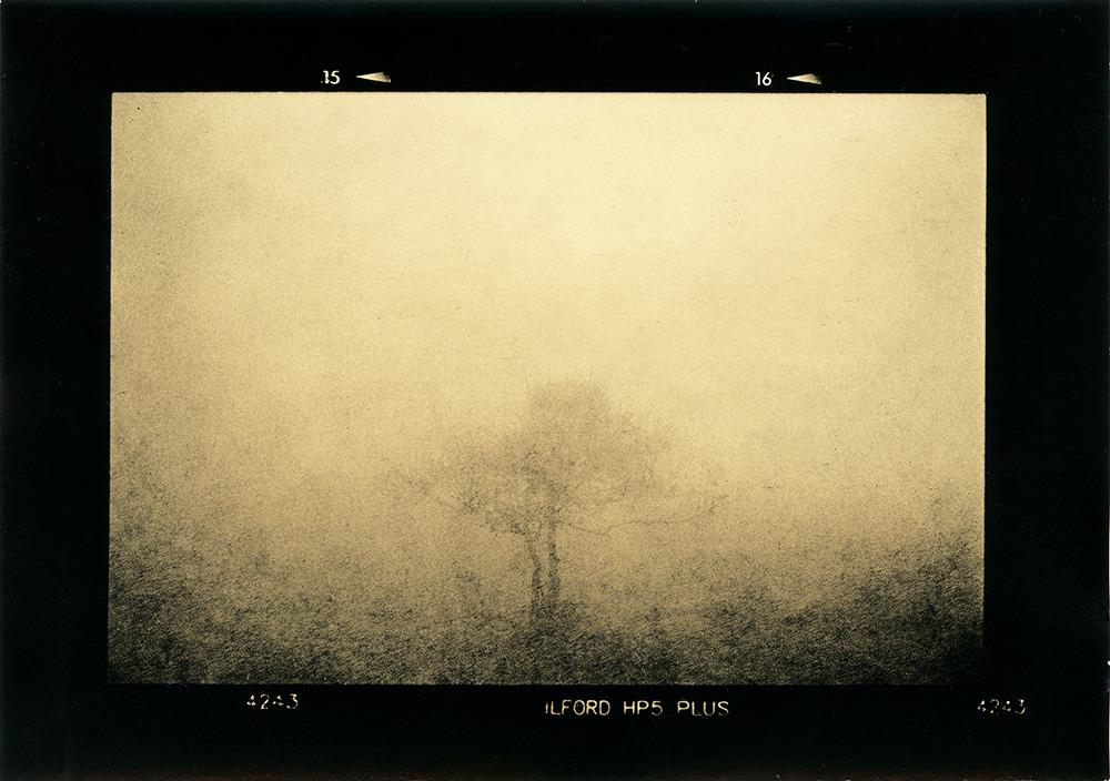 ludovico-poggioli-landscape-photographer-15
