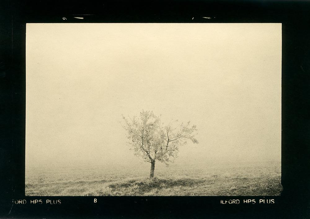 ludovico-poggioli-landscape-photographer-19