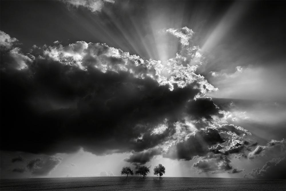 Non-Professional - FINE ART - PHOTOMANIPULATION - 3rd - Thomas Finkler (Germany)