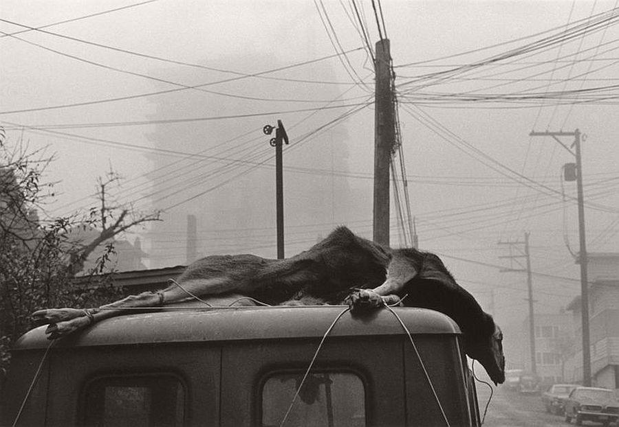 Vancouver, 1969 © Viktor Kolar