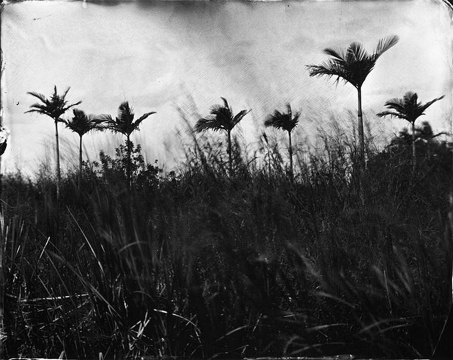 © Lisa Elmaleh