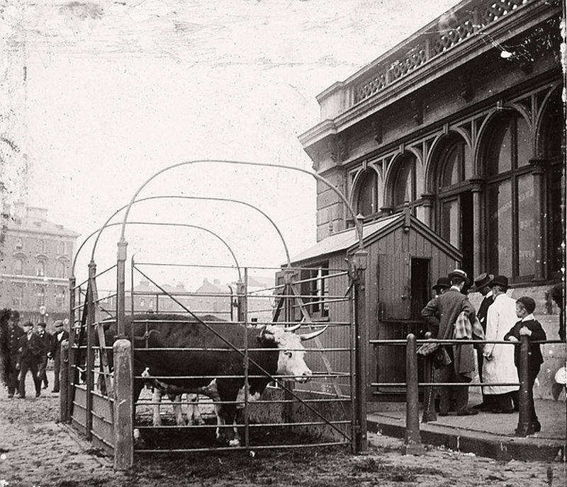 Caledonian Road Market, ca.1910