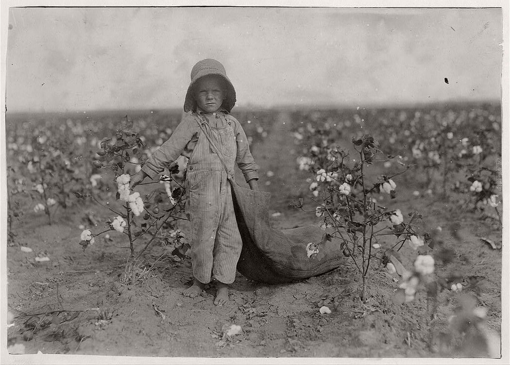 5-year old picking cotton, Comanche County, Oklahoma, 1916
