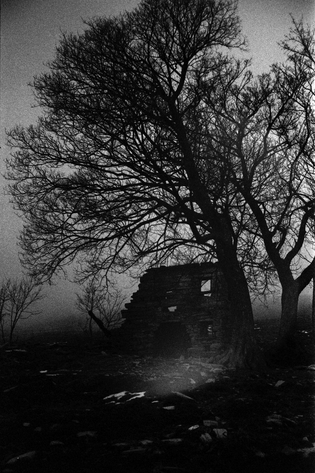 Photo: Samuele Pellecchia