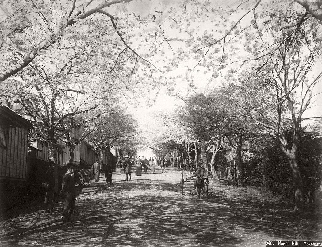 Noge hill in Yokohama, ca. 1870