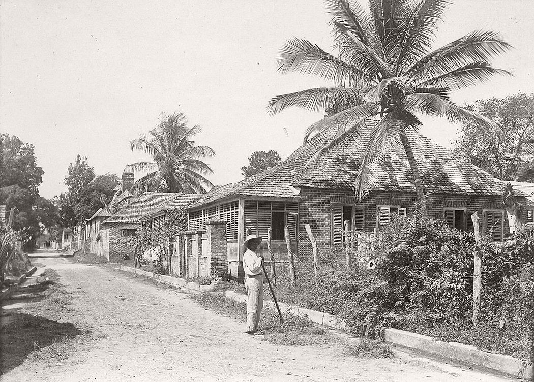 A gardener on country road in Jamaica, ca. 1890s