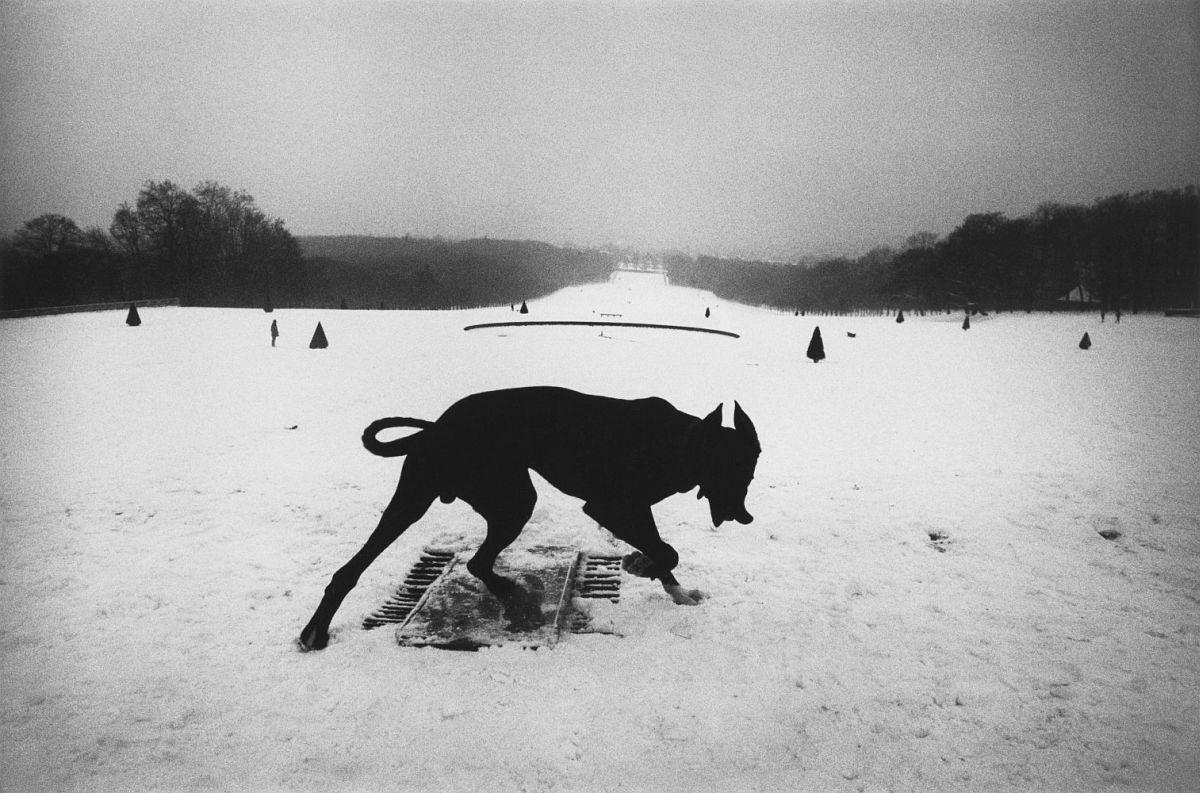 Hauts-de-Seine. Parc De Sceaux, France, 1987.