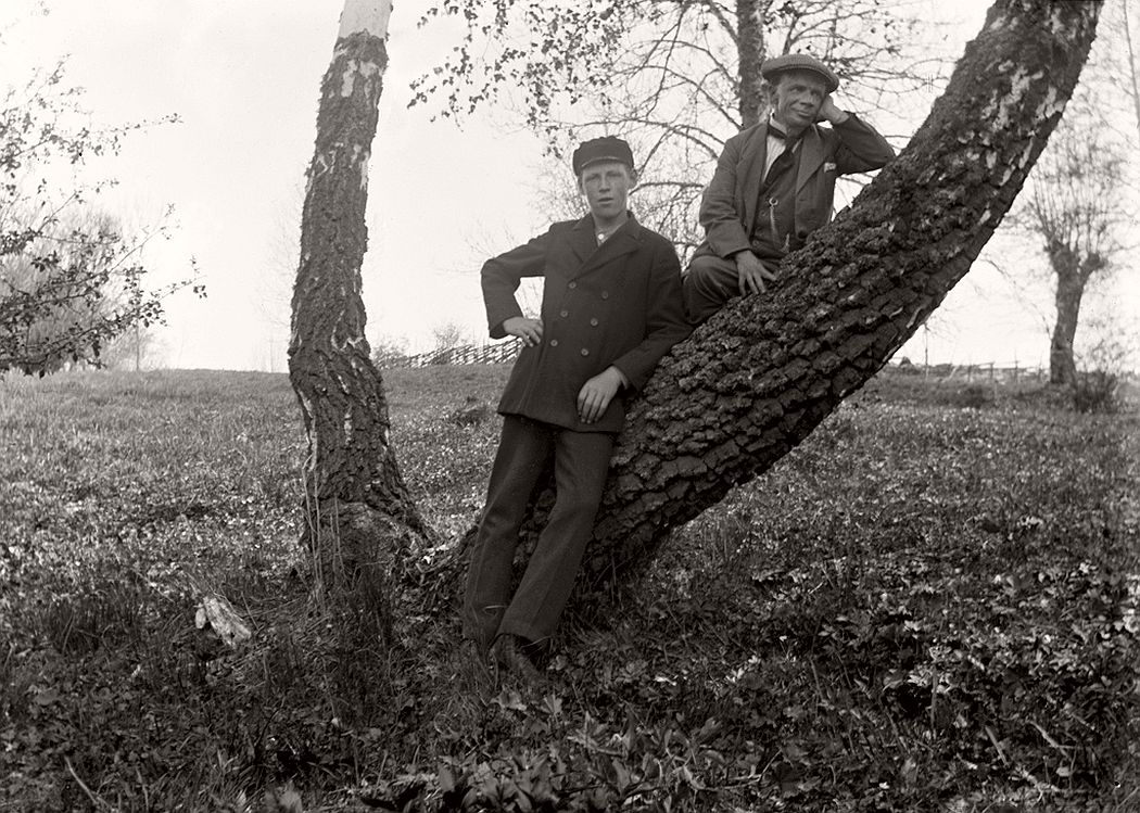 Two men on the tree.