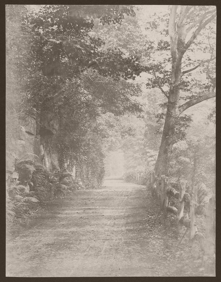 Country Road, 1855
