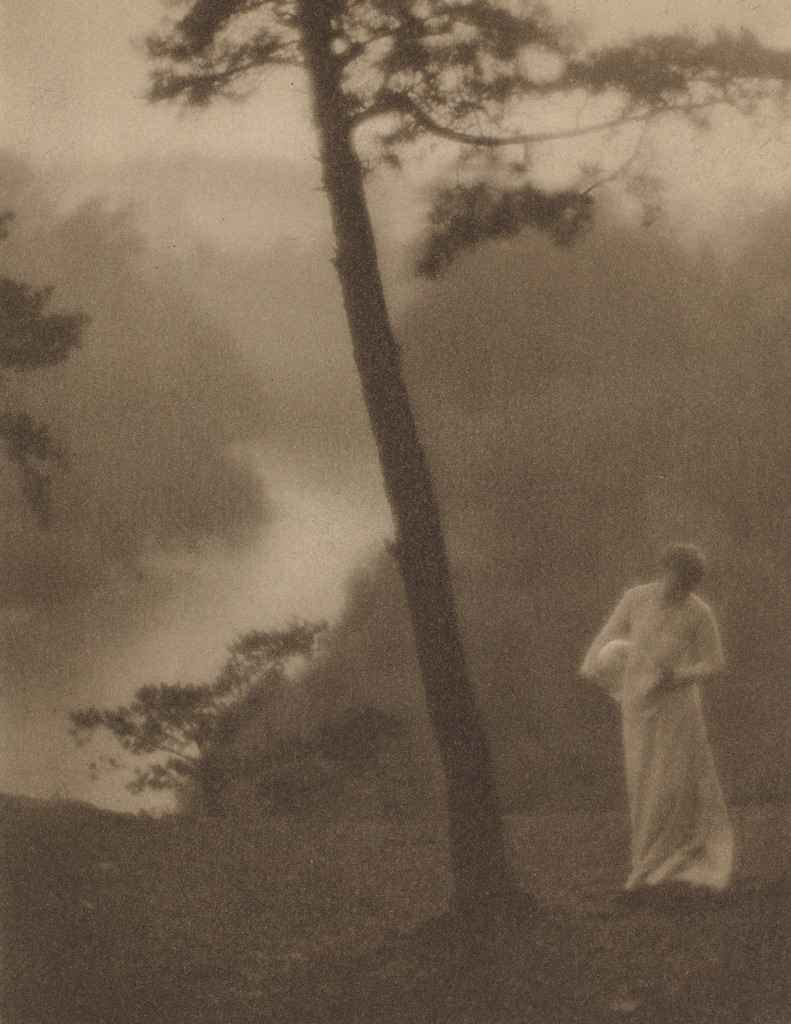 Morning, ca. 1905