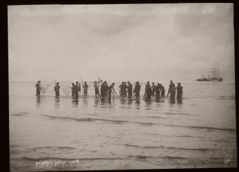 Biography: 19th Century Colonial Samoa photographer Thomas Andrew