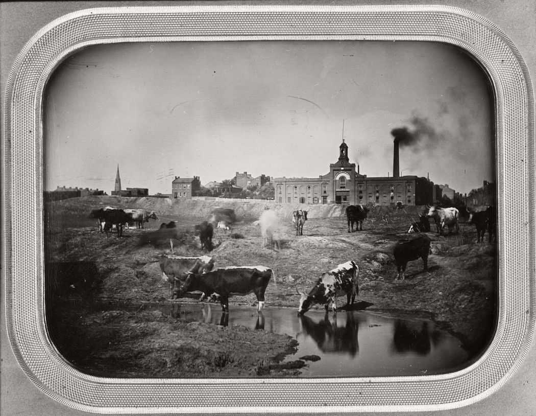 vintage  daguerreotypes of st  louis from 1848