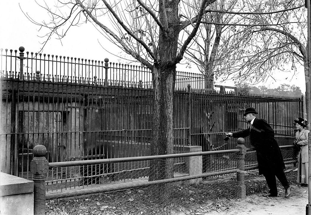 People at Cadwalader Park, Trenton, NJ, 1912