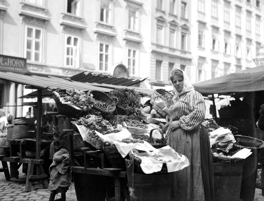 Hoher Markt Street, Vienna