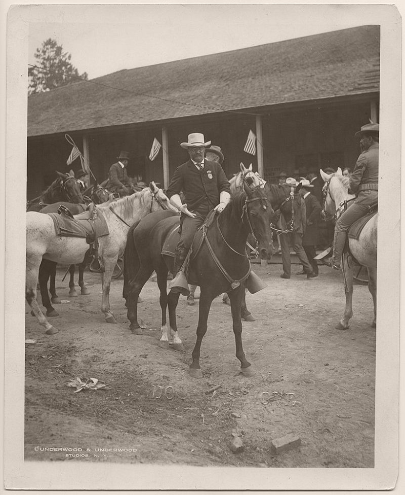 President Roosevelt on horseback, preparing to survey the battlefield on which the Battle of Chickamauga took place. Chickamauga, Walker County, Georgia. November 13, 1902.