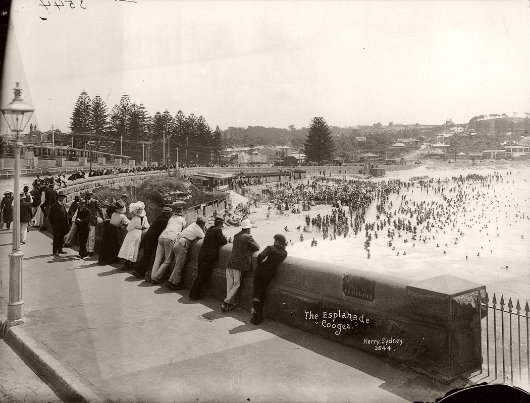 Glass negative, full plate, 'The Esplanade, Coogee', Kerry and Co, Sydney, Australia, c. 1884-1917