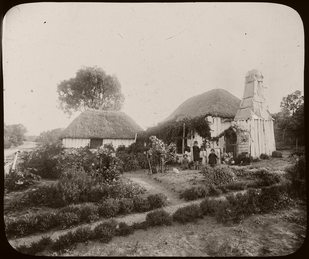 Three children and a white cat in the garden of a thatched house, Australia, ca. 1886.