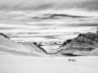 David Wrangborg: Traversing Tranquility