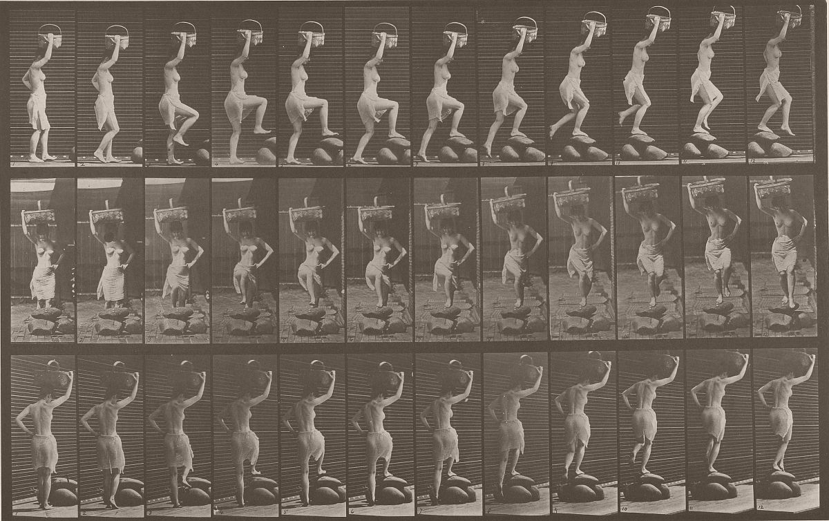 Animal Locomotion, 1887. Photo by Eadweard J. Muybridge