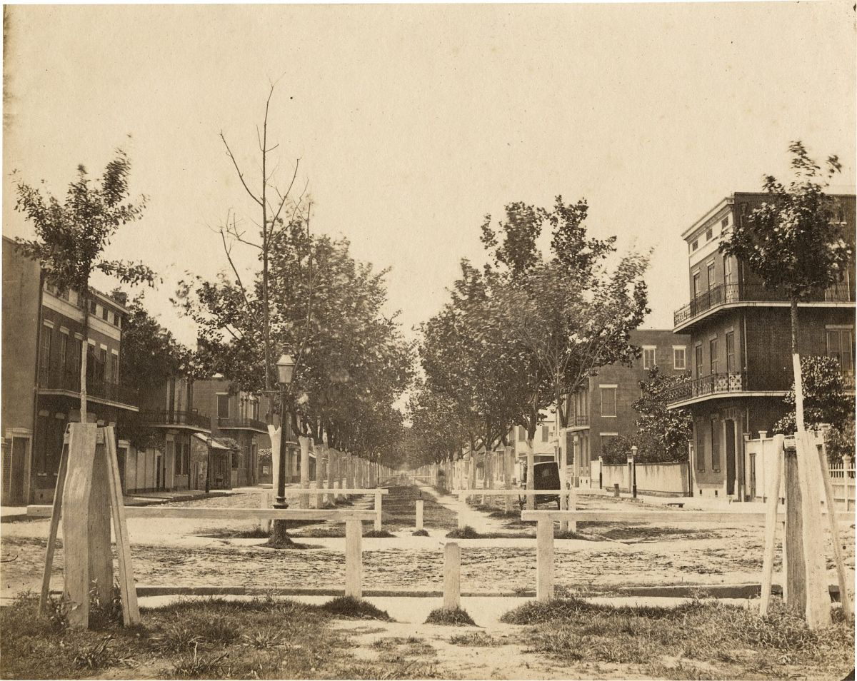 Jay Dearborn Edwards, Esplanade Street from Royal Street toward Lake, 1858–1861, Salted paper print, 7 1/2 x 9 3/8 in., The Historic New Orleans Collection