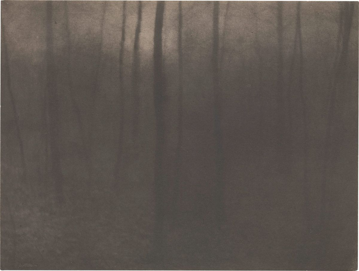 Edward Steichen, Woods Twilight, 1898, platinum print, 6 x 7 11/16 in., Lent by the Metropolitan Museum of Art, Alfred Stieglitz Collection, 1933
