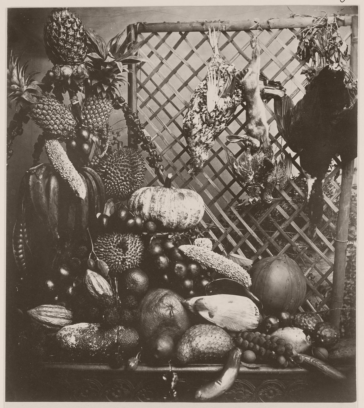 Fruit, game and poultry in Batavia, circa 1865.