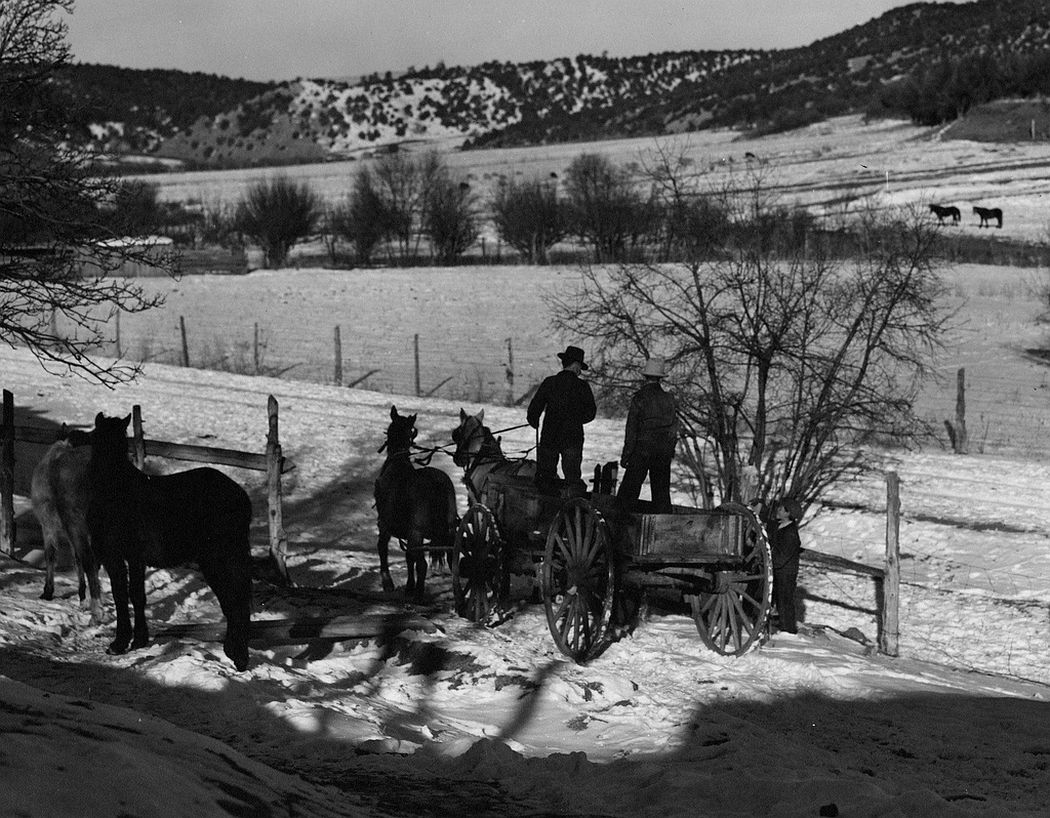 Going to the mountains for wood, Trampas, New Mexico, 1943