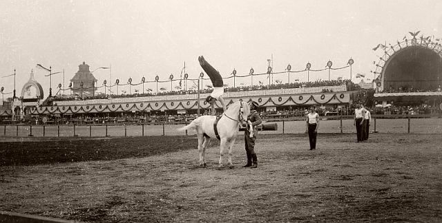 Jumping over horse on Sokol slet in Prague, 1901.