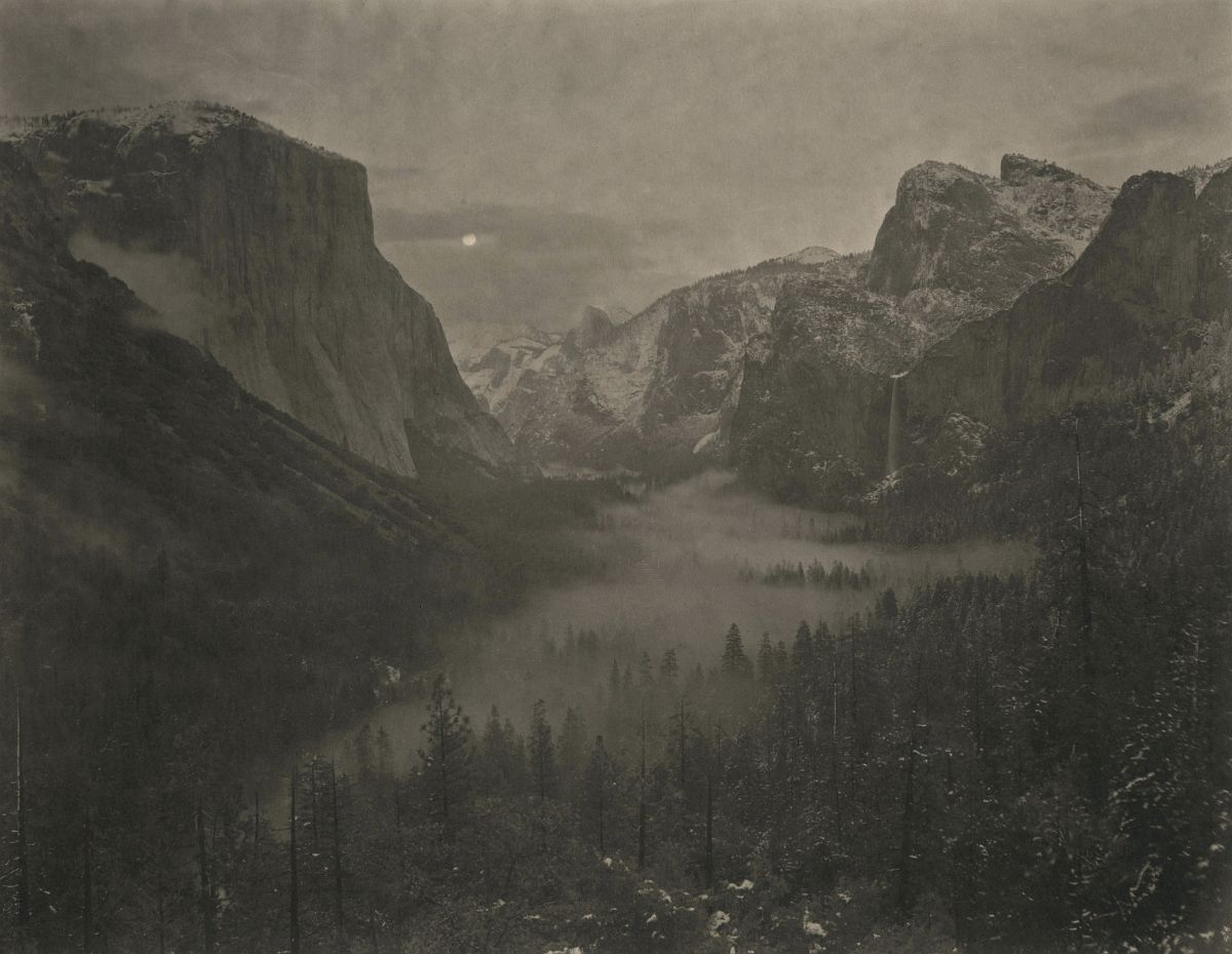 Yosemite #13, 2010/2011 from Silent Respiration of Forests - Yosemite